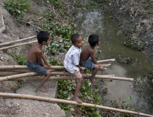 Water for food in the Sundarbans' coastal area